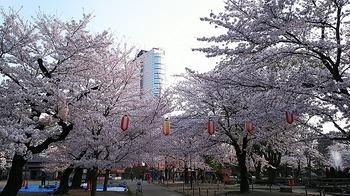 高崎公園.jpg
